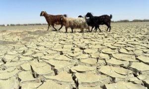 afghan climate change